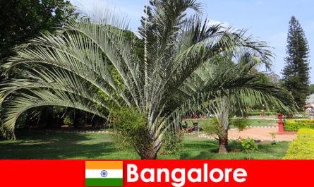 Bangalore kellemes éghajlat egész évben minden külföldi érdemes egy utazás