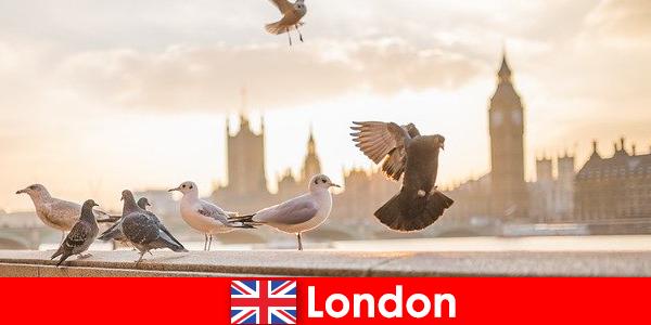 Látnivalók Londonban a nemzetközi látogatók számára