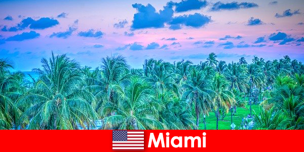 Miami lenyűgöző természet nagy trópusi vadonban