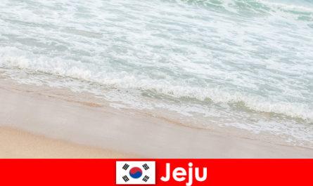 Jeju finom homokkal és tiszta vízzel ideális hely a családi nyaraláshoz a tengerparton