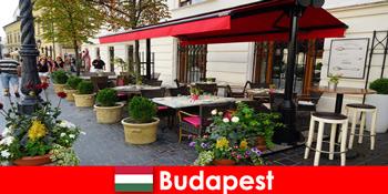 Rövid pihenőhely Budapesten a fine diningot kóstoló látogatók számára
