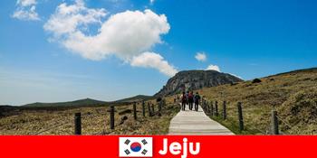 Turisták túrázni a fantasztikus természeti táj Jeju Dél-Korea