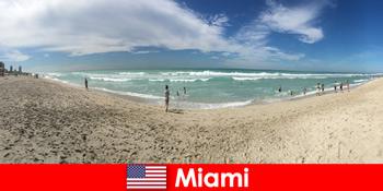 Izgalmas, csípő és egyedi érzi a fiatal utazók meleg Miami Egyesült Államok
