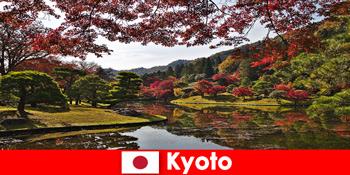 Utazás külföldre Kiotó Japánba a híres őszi lombozat színezés