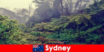 Sydney Ausztrália felfedezése a nemzeti parkok lenyűgöző világába